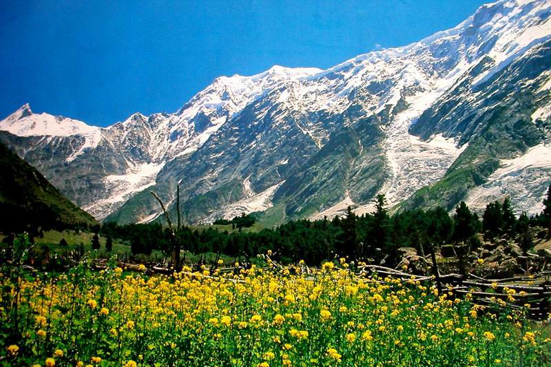 Naltar Valley