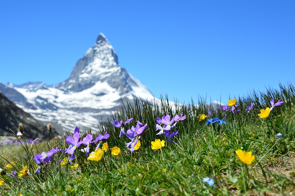 Tips to ensure you have a blast in Switzerland 3