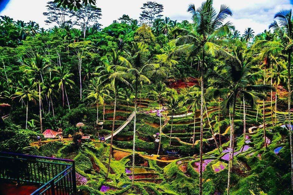 Itinerary in Bali 7